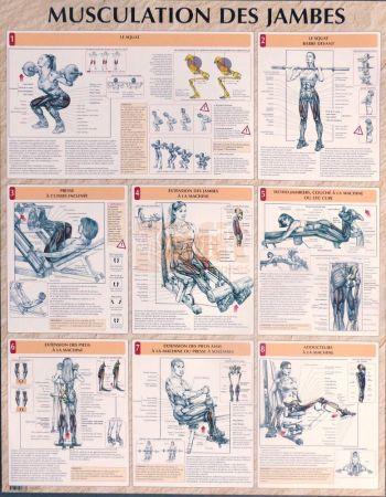 exercices pour la musculation des jambes